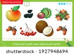 find and mark two identical... | Shutterstock .eps vector #1927948694