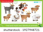 find and mark two identical... | Shutterstock .eps vector #1927948721