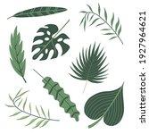 set of wild tropical plants... | Shutterstock .eps vector #1927964621