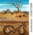 Underground Animal Hole With...
