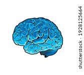 vector human brain on white... | Shutterstock .eps vector #1928125664