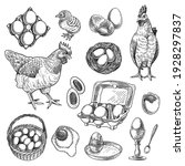 Chicken Farm Products Sketches...