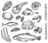 seafood sketches set. hand... | Shutterstock .eps vector #1928297897