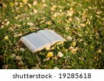 Open Book On The Grass