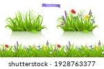 wild flowers  forb alpine... | Shutterstock .eps vector #1928763377