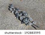 gravestone decoration | Shutterstock . vector #192883595