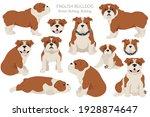english bulldog clipart.... | Shutterstock .eps vector #1928874647