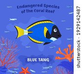 coral reef inhabitants.... | Shutterstock .eps vector #1929142487