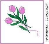 minimalistic tulip bouquet tied ...   Shutterstock .eps vector #1929234524