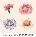 flower vector painting set... | Shutterstock .eps vector #1929559157