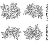 flowers set. collection of... | Shutterstock .eps vector #1929560237