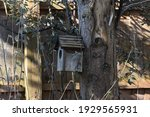 Rustic Wooden Bird House On A...