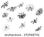 flowers on white background....   Shutterstock . vector #192968741