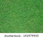 grass background seeing grass... | Shutterstock . vector #192979955
