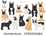 French Bulldogs In Different...