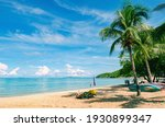 Dream Beach With Palm Trees On...