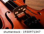 Violin  Details Of A Beautiful...