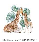 Giraffes With Monstera. Mum...