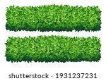 vector garden bush isolated... | Shutterstock .eps vector #1931237231