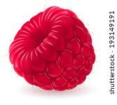 apperizing  fresh raspberry... | Shutterstock .eps vector #193149191