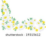 the frame flower. jpg | Shutterstock . vector #19315612
