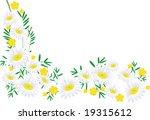 the frame flower. jpg   Shutterstock . vector #19315612