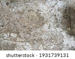 old grunge cracked wall... | Shutterstock . vector #1931739131