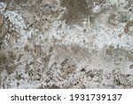 old grunge cracked wall... | Shutterstock . vector #1931739137