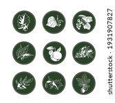 Set Of Nine Logos Of Forest...