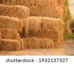 Haystack  A Bale Of Hay Group....