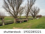 Old Agricultural Wagon In A...