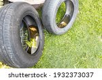 Abandoned Tyre Outdoor With...
