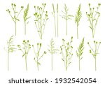 natural herbs isolated on white ... | Shutterstock .eps vector #1932542054