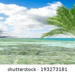 turquoise sea sky coconut palm | Shutterstock . vector #193273181