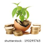 Coins And Plant In Eggshell...