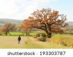 Stock photo walking at winchcombe in the cotswold on a sunny autumn day 193303787