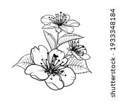 hand drawn design elements...   Shutterstock .eps vector #1933348184