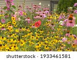 A Home Flower Garden Of Mainly...