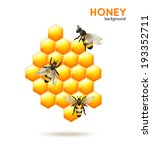 Sweet honey comb with bees workers background vector illustration