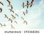 flying seagulls   Shutterstock . vector #193368281