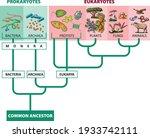 vector illustration of...   Shutterstock .eps vector #1933742111