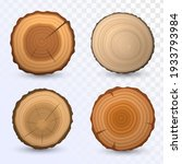 Set Of Round Cuts Of Logs ...