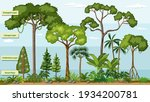 layers of a rainforest with... | Shutterstock .eps vector #1934200781