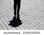 Black Silhouette And Shadow Of...