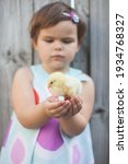 Little Girl Holding Chick In...