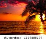 Silhouette Of Beautiful Sunset...