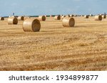A Haystack Left In A Field...