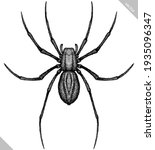 engrave isolated spider hand... | Shutterstock .eps vector #1935096347
