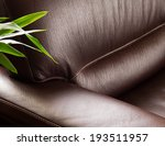 Dark Leather Sofa With Plant