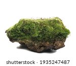 Green Moss On Stone  Isolated...